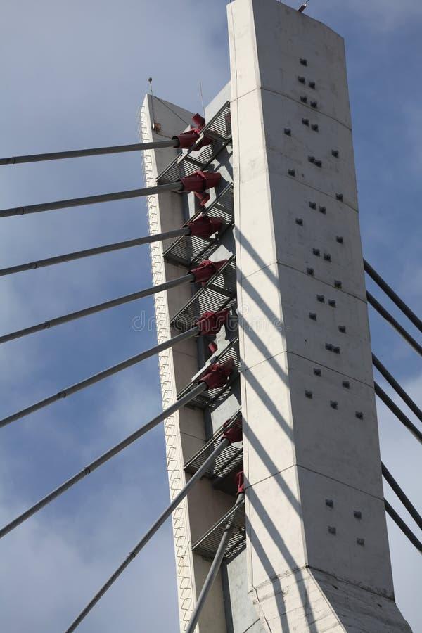 Pylonschrägseilbrücke stockfoto