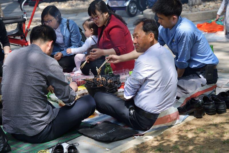 Pyongyang, Corea del Norte Familia en la comida campestre del Bbq en parque público fotos de archivo libres de regalías