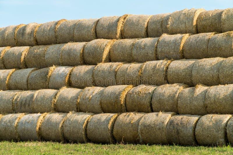 Pyramid av hötrummor som staplas i ett fält nära djur lantgård royaltyfri fotografi
