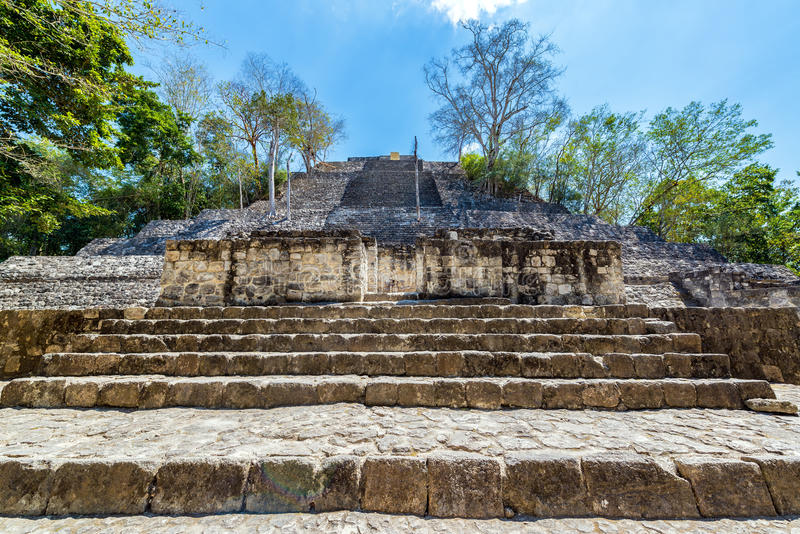 Pyramid in Calakmul, Mexico stock photography