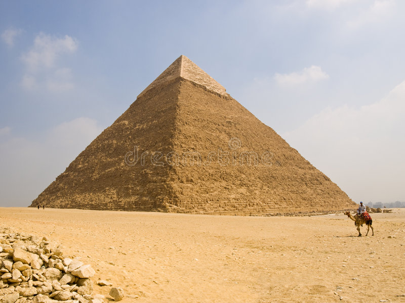 Pyramid of Chefren. Dromedary camel in front of the Great Pyramid of Chefren. Egypt series stock photography