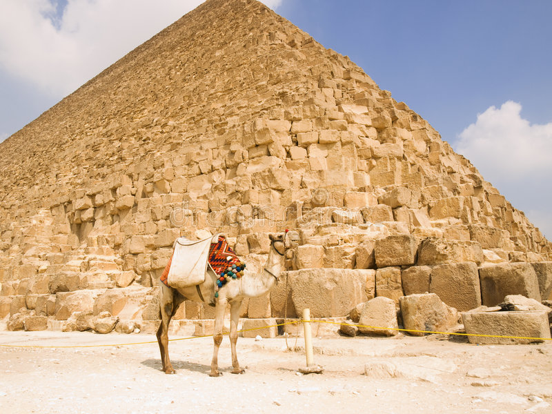 Download Pyramid of Cheops stock image. Image of archaeology, camel - 7639033