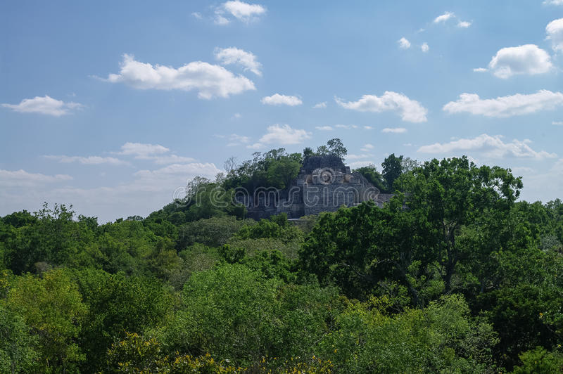 The pyramid in the complex rises over the jungle of Calakmul royalty free stock photography