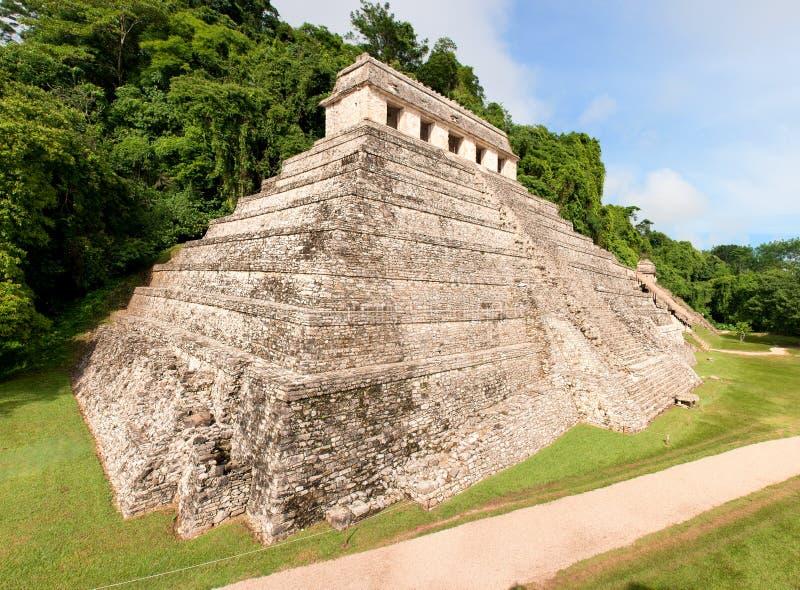 pyramid för mayamexico palenque arkivbild
