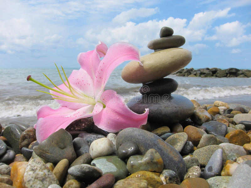 A pyramid of five stones and a flower Lily on the beach. A pyramid of five wet stones and a flower Lily on the beach against the background of the sea and sky stock photo