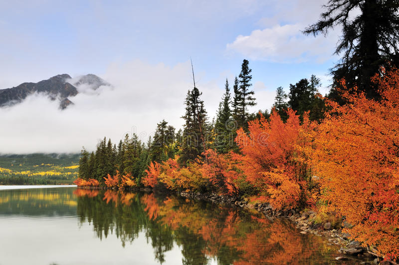 Pyramid Lake and Fall Color, Jasper royalty free stock photography