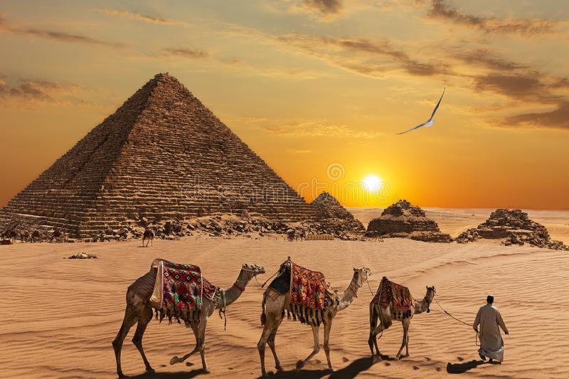 The Pyramid of Menkaure  and the three pyramid companions, the camels and the bedouins in the desert stock photos