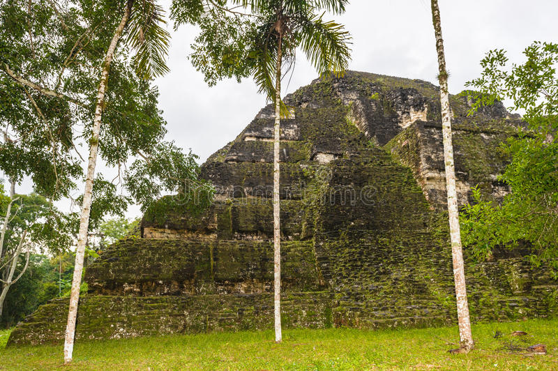 Pyramid of Mundo Perdido. Part of Mayan city of Tikal, Mundo Perdido, Guatemala royalty free stock photography