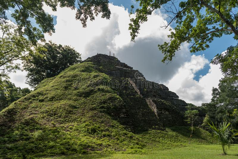 Pyramid and the Temple in Tikal Park. Sightseeing object in Guatemala with Mayan Temples and Ceremonial Ruins. Tikal is an ancient royalty free stock image