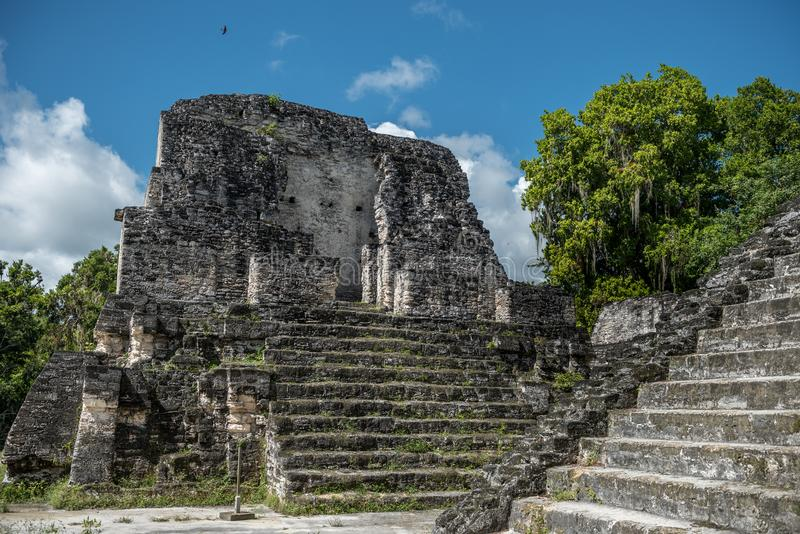 Pyramid and the Temple in Tikal Park. Sightseeing object in Guatemala with Mayan Temples and Ceremonial Ruins. Tikal is an ancient royalty free stock photos