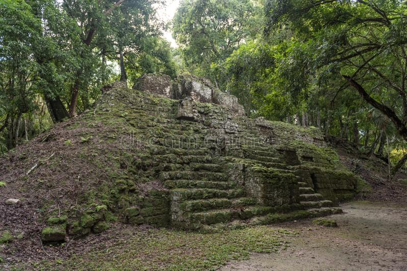 Pyramid and the Temple in Tikal Park. Sightseeing object in Guatemala with Mayan Temples and Ceremonial Ruins. Tikal is an ancient. Pyramid and the Temple in royalty free stock photography