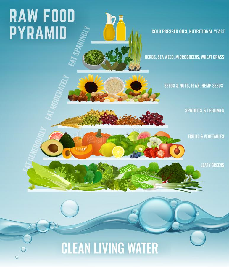 Pyramide alimentaire crue illustration stock