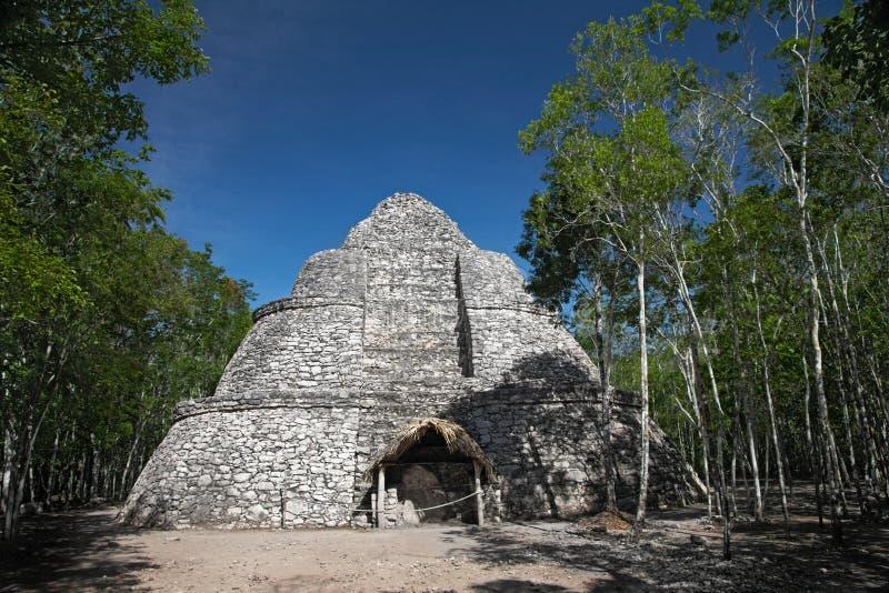 Pyramide de Xaibe dans Coba, Mexique photo libre de droits