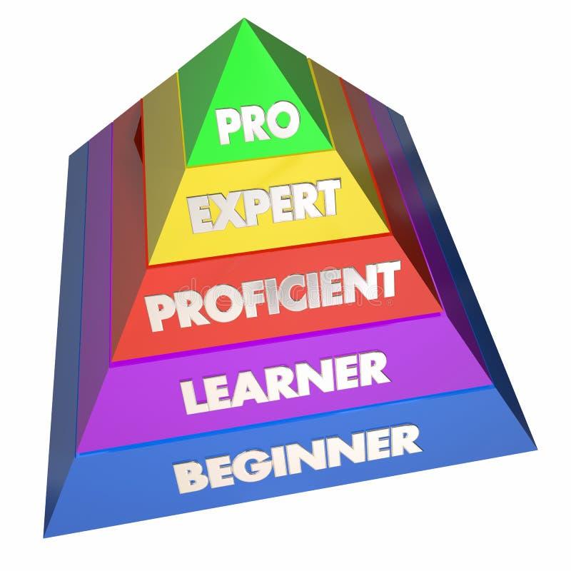 Pyramide experte professionnelle d'expérience d'étudiant illustration stock