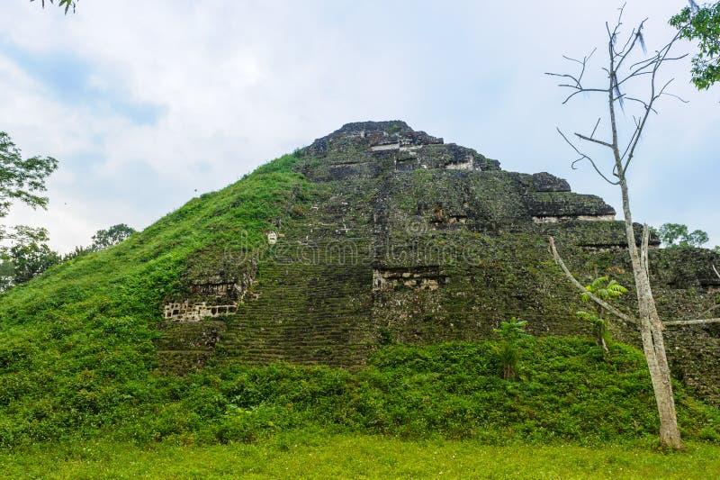 Pyramide von Mundo Perdido lizenzfreie stockbilder