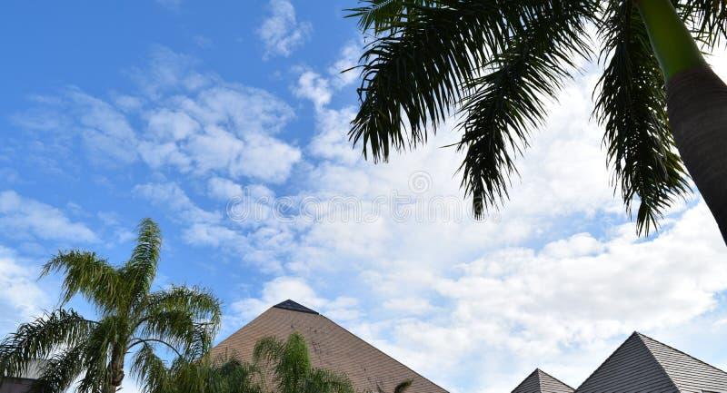 Pyramiden i Florida med blå himmel och gömma i handflatan royaltyfri fotografi