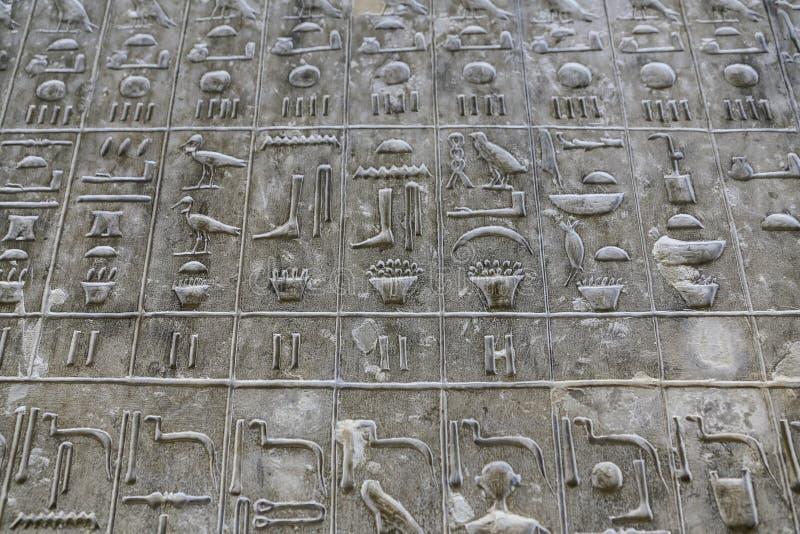 Pyramiden smsar i pyramid av Unas, Saqqara, Kairo, Egypten fotografering för bildbyråer