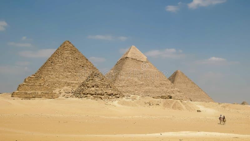 Pyramiden von Giseh und zwei Kamele in Kairo, Ägypten stockbild
