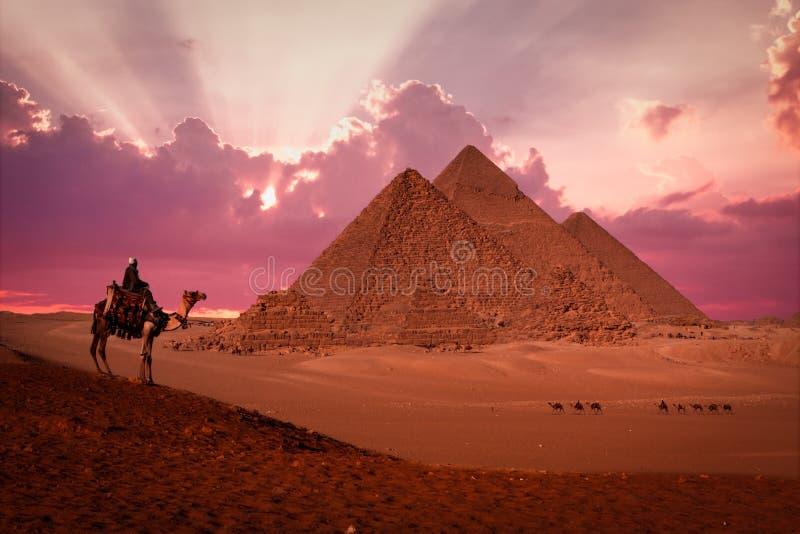 Pyramider giza cairo Egypten med beduinen på solnedgångphantasyen royaltyfria foton