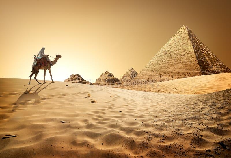Pyramider i öken arkivfoton