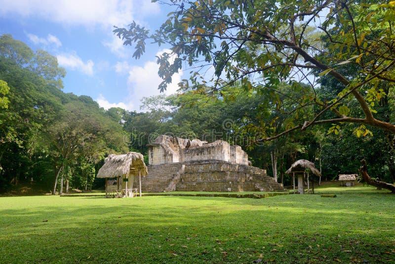 Pyramider och Stella i det arkeologiskt parkerar Cebal i Guatemal royaltyfri foto