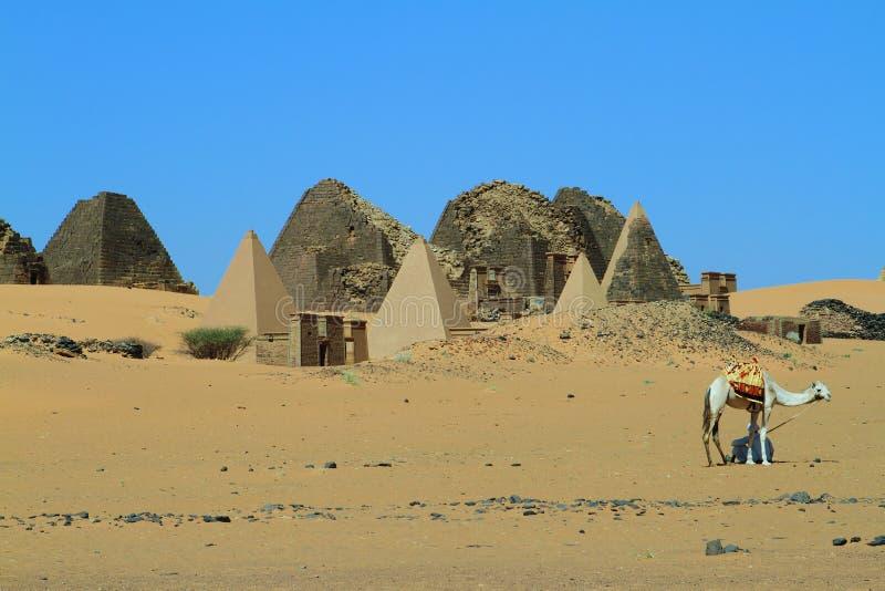 Pyramiderna av Meroe arkivfoto