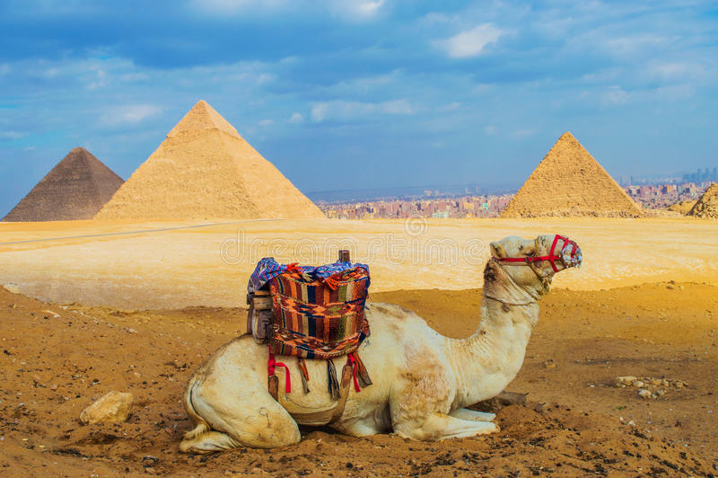 Pyramides de Gizeh image stock