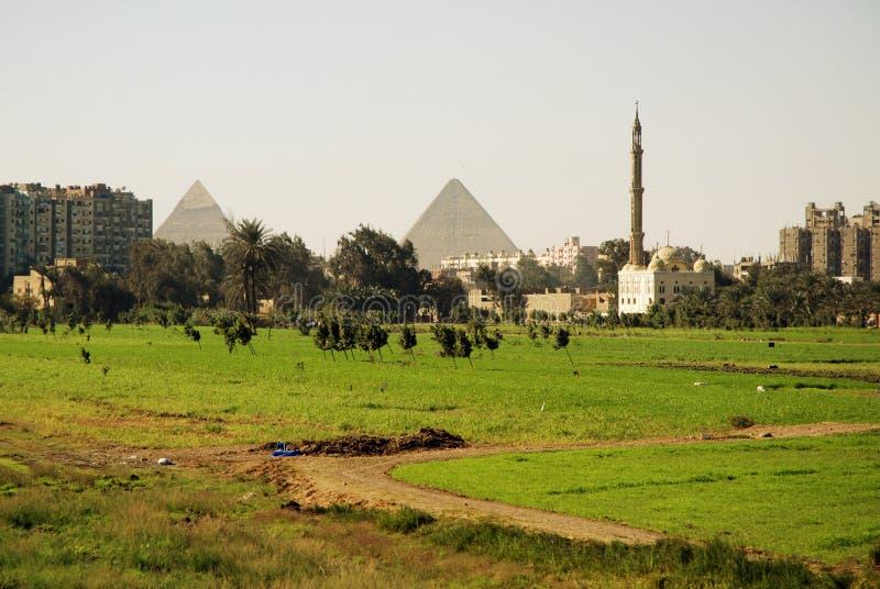 Pyramids. Cairo near the Great pyramids in Giza royalty free stock image