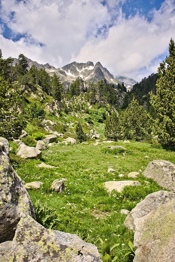 Pyrenäen-Gebirgsstrecke stockfotografie