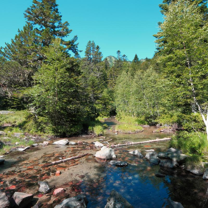 Pyrenean stream in Ariege. Occitanie in South of France royalty free stock photo