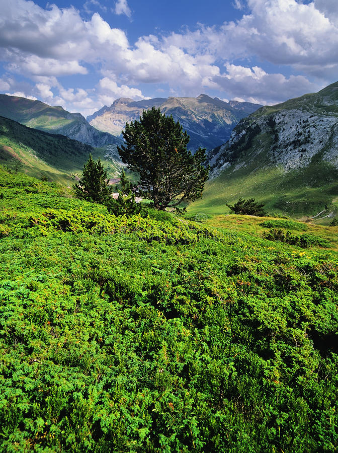 Download Pyrenees stock image. Image of france, midi, cliffs, pass - 22504039
