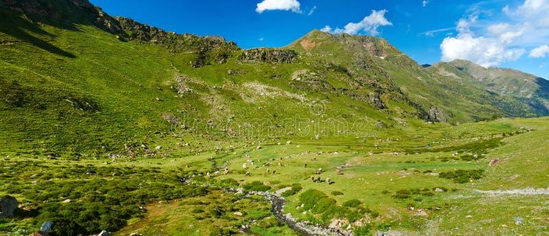 pyrenees andorra lizenzfreie stockbilder