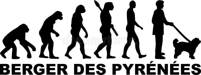 Pyrenees ewolucji Pasterska niemiec royalty ilustracja