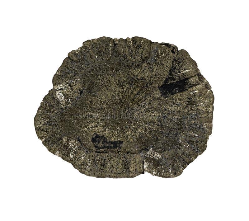 Pyrit auf einem weißen Hintergrund, lokalisiert lizenzfreies stockbild