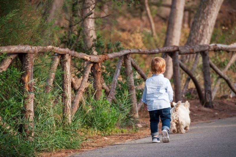 Pys som går med en hund i parkera fotografering för bildbyråer