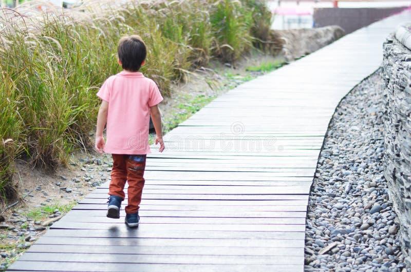 Pys som går på thewoodbron fotografering för bildbyråer