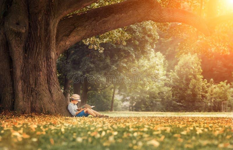 Pys som läser en bok under stort lindträd arkivfoto