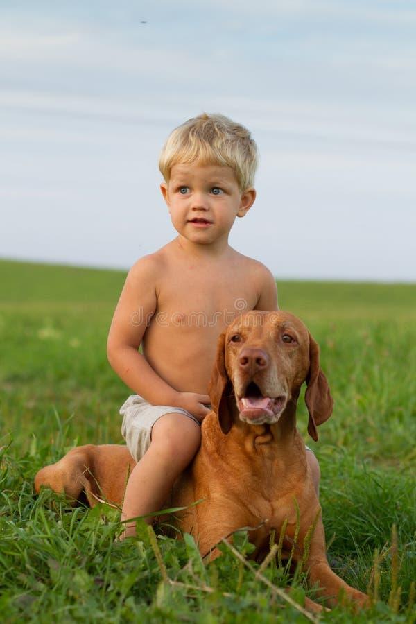 Pys som spelar med hans hund arkivbild