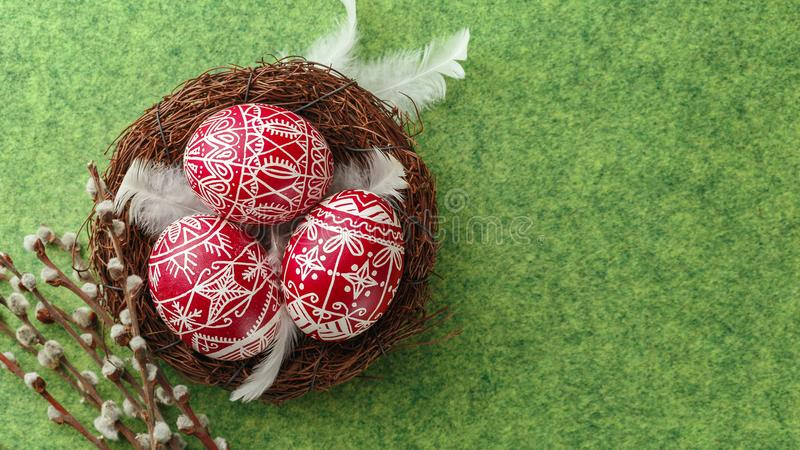 Pysanky, decorated Easter eggs in the nest. Willow branches and white feathers on green background, wide format, top view, copy space stock image