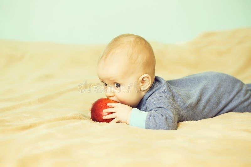 Pysen biter det röda äpplet royaltyfri foto