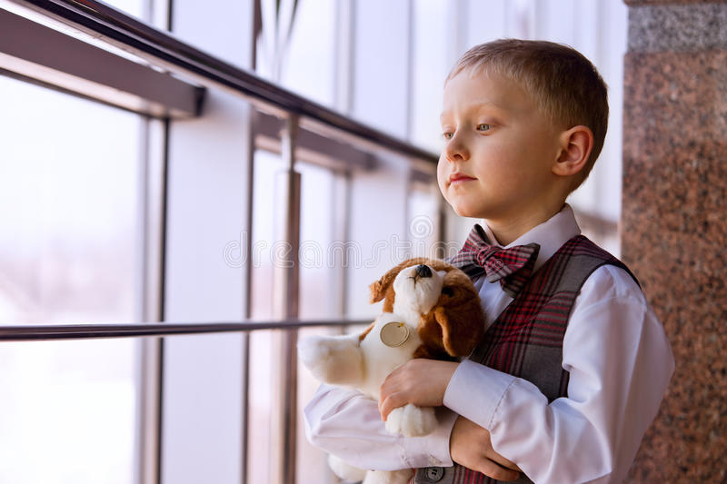 Pojke med valptoyståenden royaltyfri fotografi