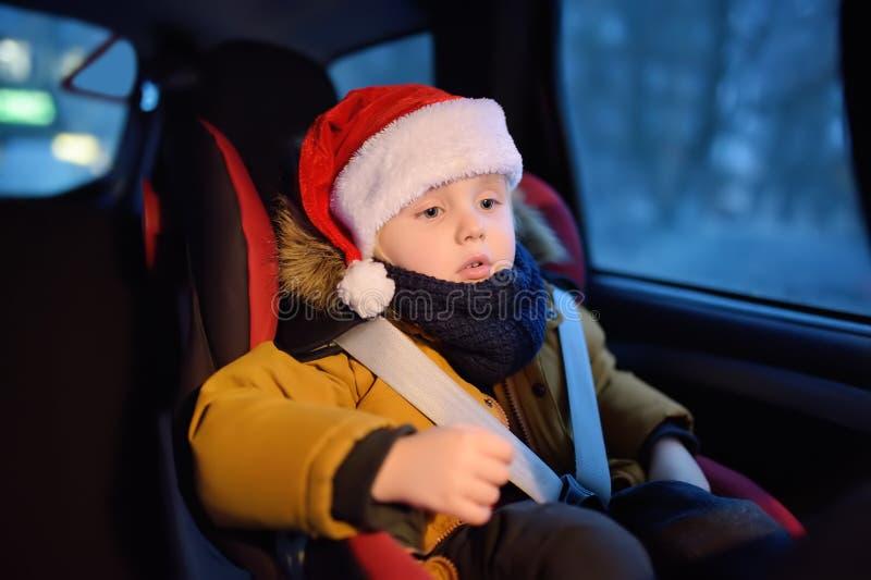 Pysen i jultomten hatt som sitter i bilsäte, går i bilen för en julgran royaltyfria bilder