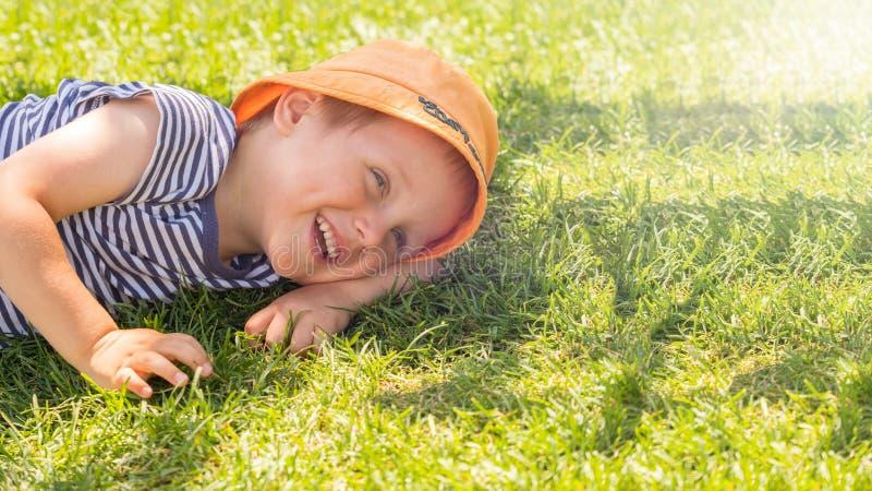 Pysen ligger på en grön gräsmatta royaltyfri fotografi