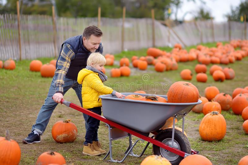 Pysen och hans fader på turnerar av en pumpalantgård på hösten Barn som sitter på jätte- pumpa royaltyfri fotografi