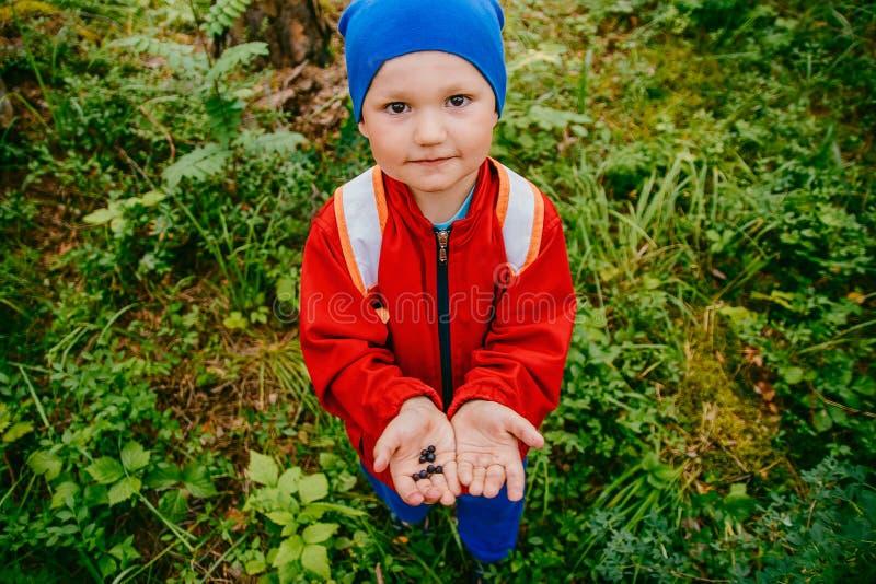 Pyshåll i hans händer blåbären royaltyfria bilder