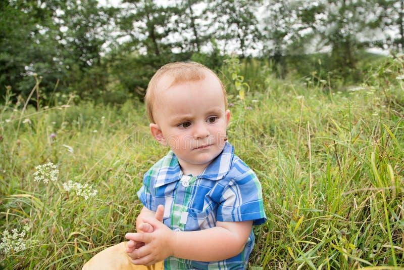 Pyssammanträde i gräset, nyckelpigakrypning på hans framsida royaltyfri bild