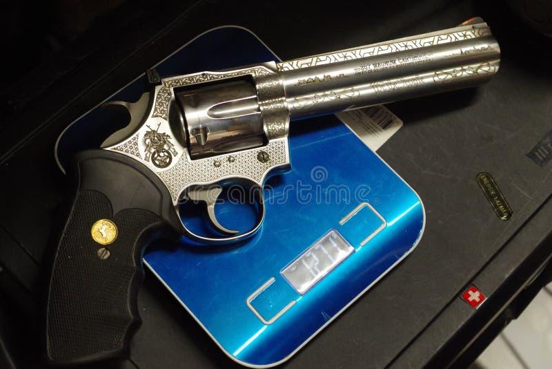 Python 357 de poulain sur une échelle, belle arme puissante photographie stock libre de droits
