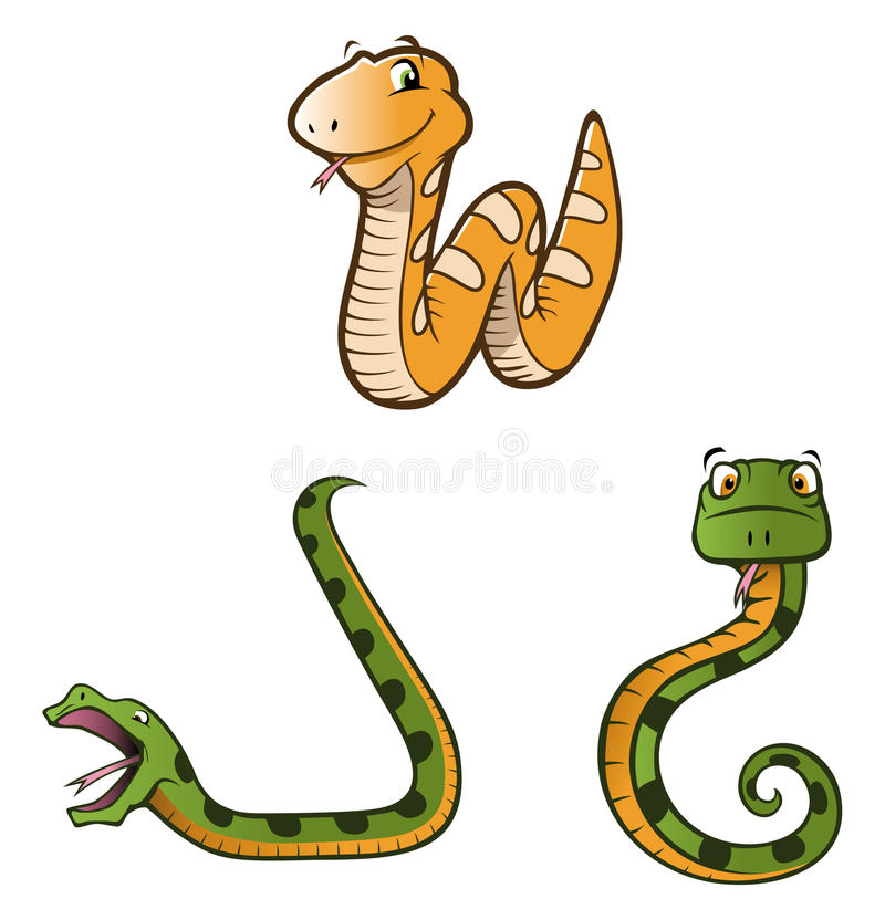 Free Python Snakes Collection Royalty Free Stock Photos - 12965918
