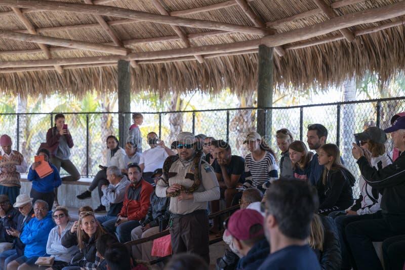 Pytonu przedstawienie w błota safari parku zdjęcia royalty free