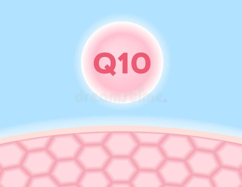 Q 10 skóra i ikona ilustracja wektor